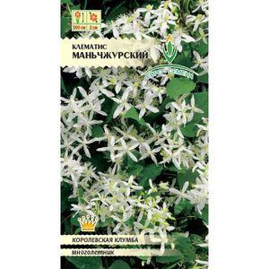 Семена клематиса манчжурского