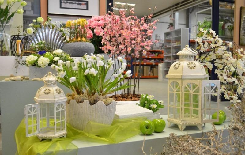 Фен-шуй в цветоводстве. Какими принципами руководствоваться в выборе и размещении растения в доме согласно этому учению?