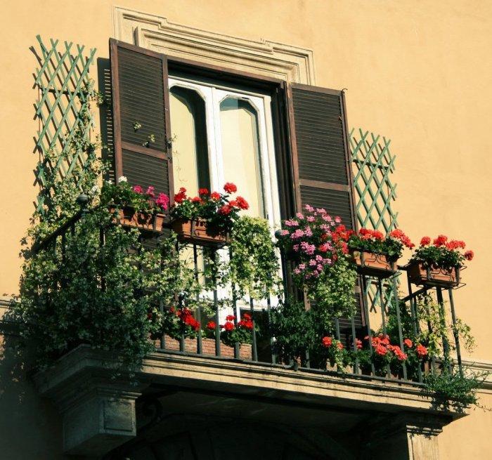 Трах глотку засадил на балконе огромными