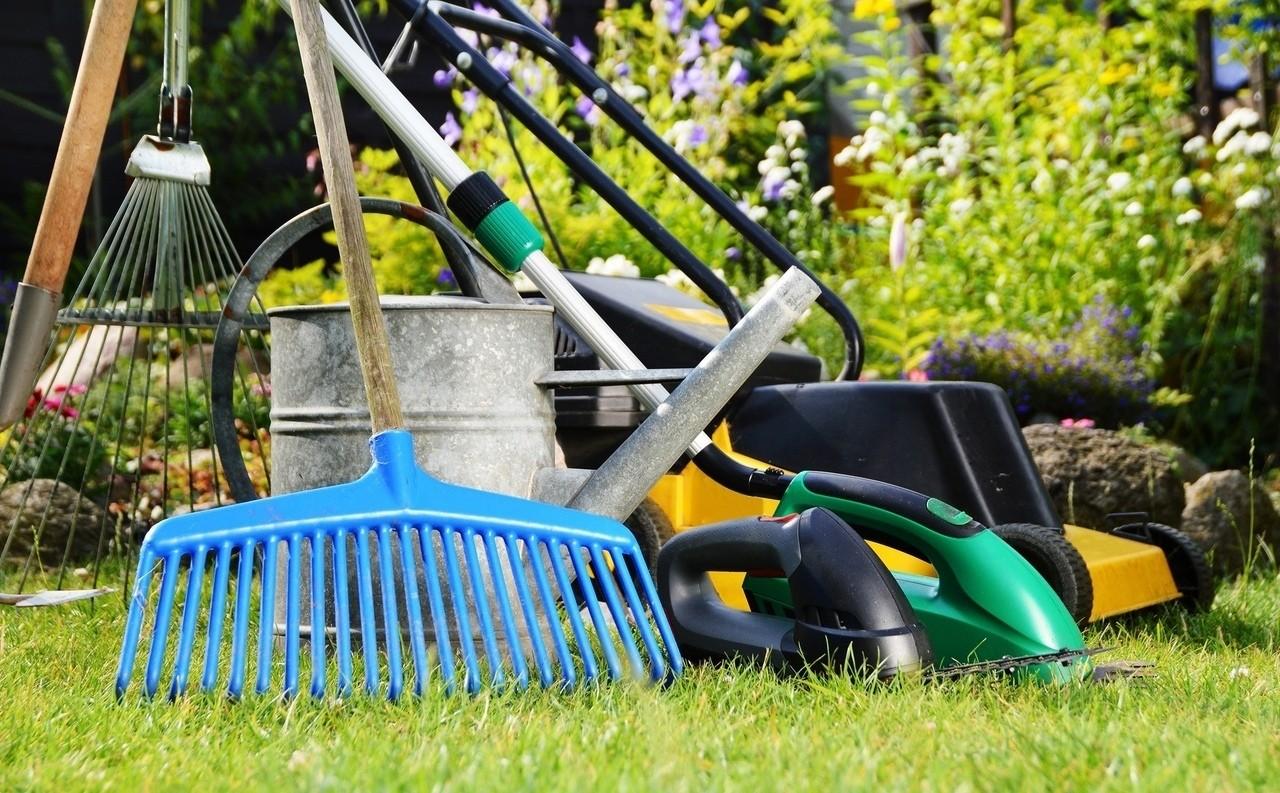 Самые полезные садовые инструменты